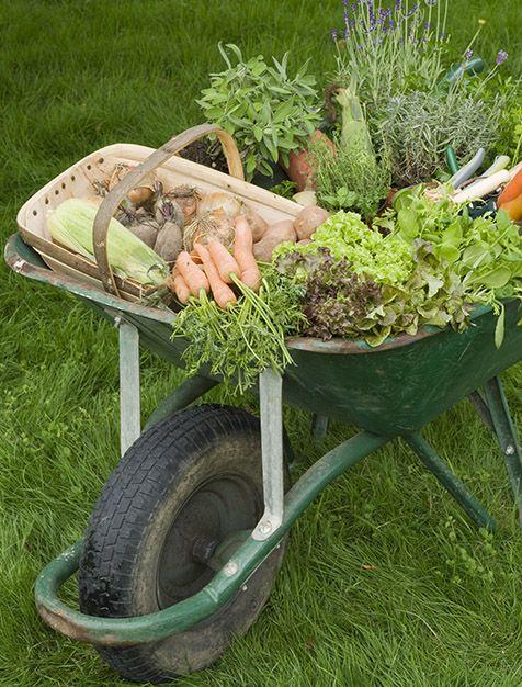 estate-gardeners