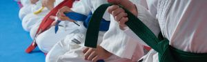 martial arts kids 300x90 Norland Nannies