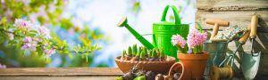 spring gardening 300x90 Housekeeper Cook